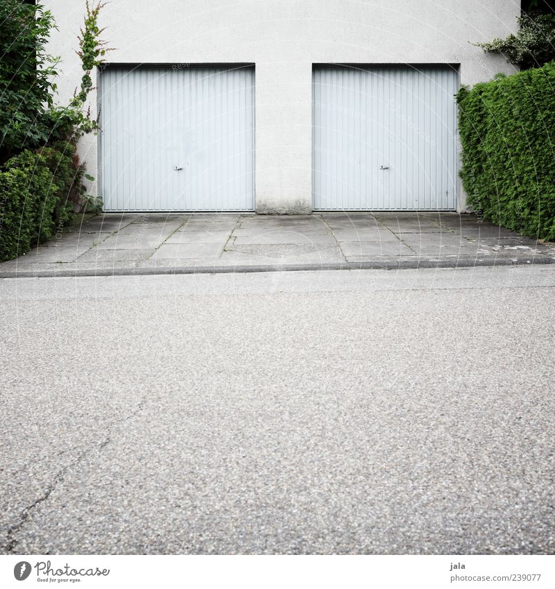 Plant House (Residential Structure) Street Wall (building) Architecture Wall (barrier) Building Facade Bushes Gloomy Asphalt Manmade structures Village Sidewalk
