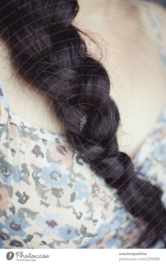 plait.pattern Feminine Hair and hairstyles 1 Human being Black-haired Brunette Long-haired Braids Plaited Pattern Colour photo Subdued colour Close-up Detail