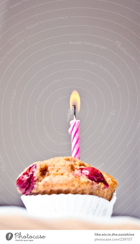 happy birthday tooooo you Food Cake Dessert Candy Feasts & Celebrations Birthday Delicious Sweet Pink White Joy Happy Happiness Contentment