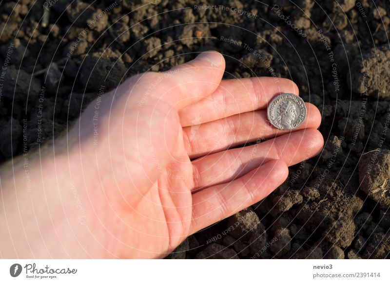 Roman silver coin (denarius) in the hand of an archaeologist Work and employment Profession Financial Industry Business Art Field Money Round Brown Silver dinar