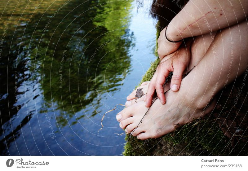 Faded Memory Park Brook River Barefoot Touch To hold on Hang Lie Sit Uniqueness Wet Natural Thin Trust Safety Calm Twig Reflection Scar Dirty Hand Feet