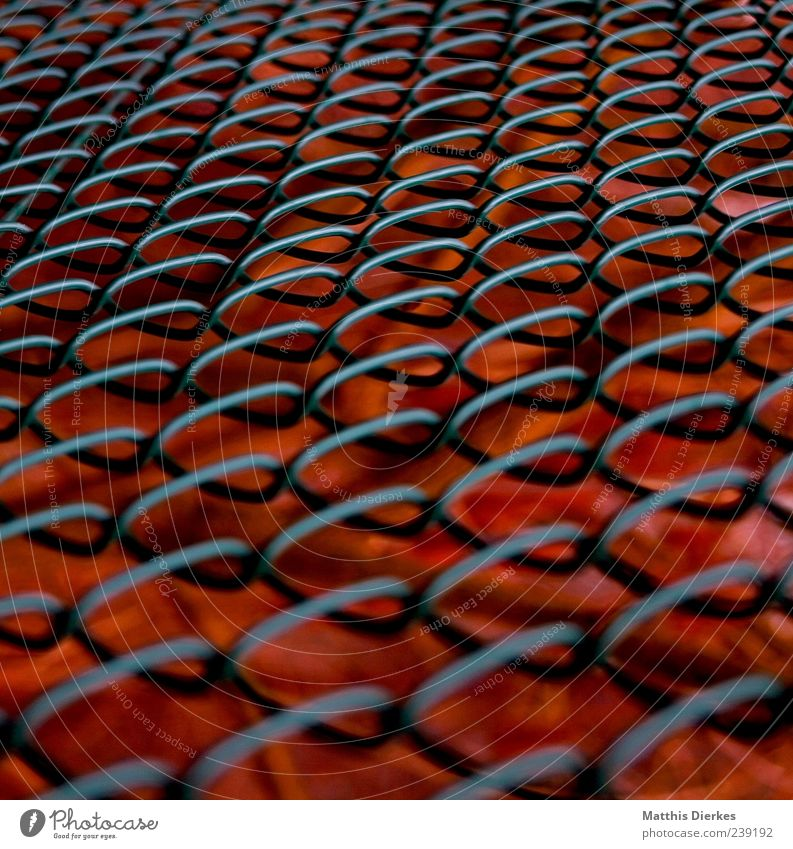 lattice Metal Old Hot Fence Wire Wire netting Embers Red Colour photo Exterior shot Deserted Day Shallow depth of field Exceptional Structures and shapes