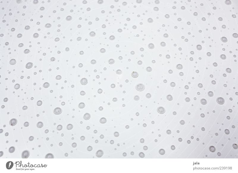 rainy day Water Drops of water Rain Wet Gray White Colour photo Exterior shot Deserted Neutral Background Day Many Lie Bright background
