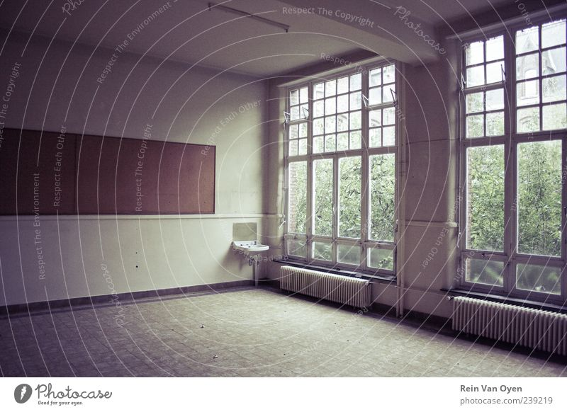 Big windows Industrial plant Manmade structures Building Architecture Wall (barrier) Wall (building) Window Stone Glass Old Moody Sadness Death Loneliness