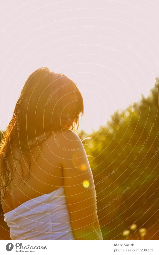 White Beautiful Summer Spring Hair and hairstyles Back Natural Shoulder Long-haired Lens flare Dark-haired