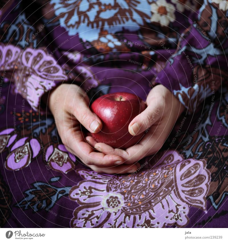Human being Woman Hand Red Adults Nutrition Feminine Food Fruit Esthetic Round Apple Organic produce Fairy tale Vegetarian diet Attentive