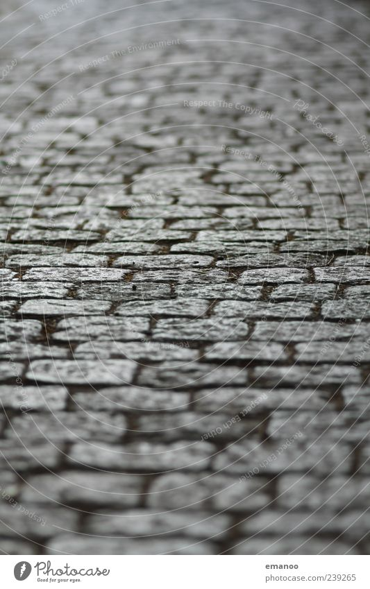 Schlossbergweg Traffic infrastructure Street Lanes & trails Stone Going Paving stone Square Old Blur Line Offset Exterior shot Close-up Detail Abstract Pattern