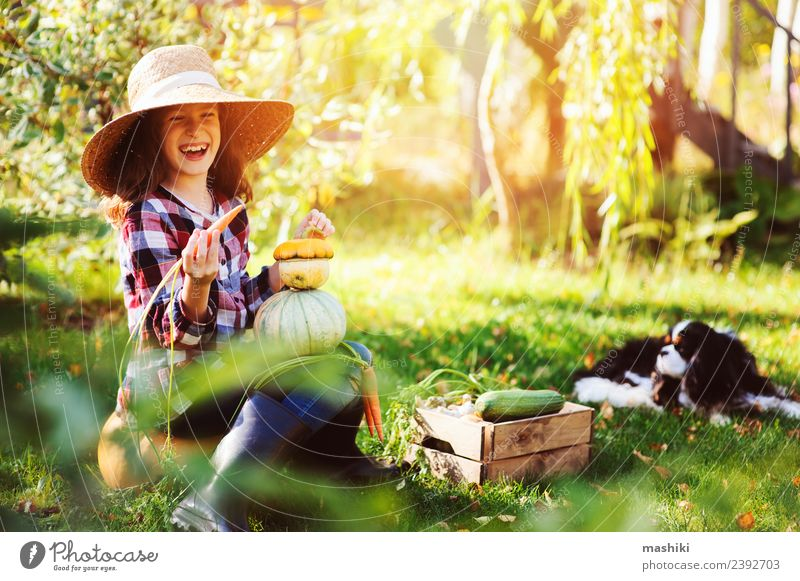 happy child girl playin in autumn garden Child Nature Dog Green Landscape Lifestyle Autumn Funny Natural Family & Relations Small Growth Fresh Vegetable Seasons