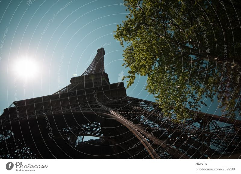 Sky Vacation & Travel Tree Summer Leaf Architecture Metal Exceptional Tall Tourism Authentic Europe Tower Beautiful weather Manmade structures Historic