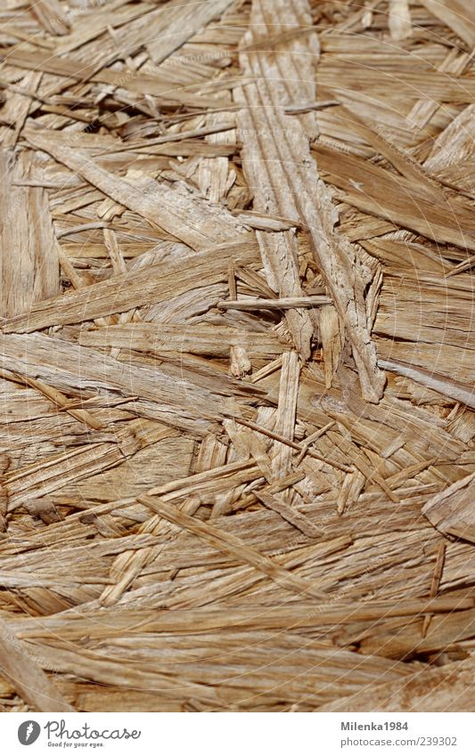 background Wood Brown Yellow compressed wood Shavings chipboard Wood shavings Structures and shapes splinter of wood Colour photo Exterior shot Deserted