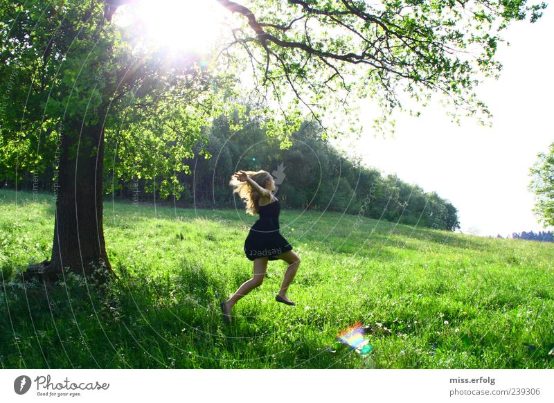 Woman Nature Beautiful Green Summer Plant Sun Tree Landscape Joy Forest Environment Meadow Feminine Grass Freedom