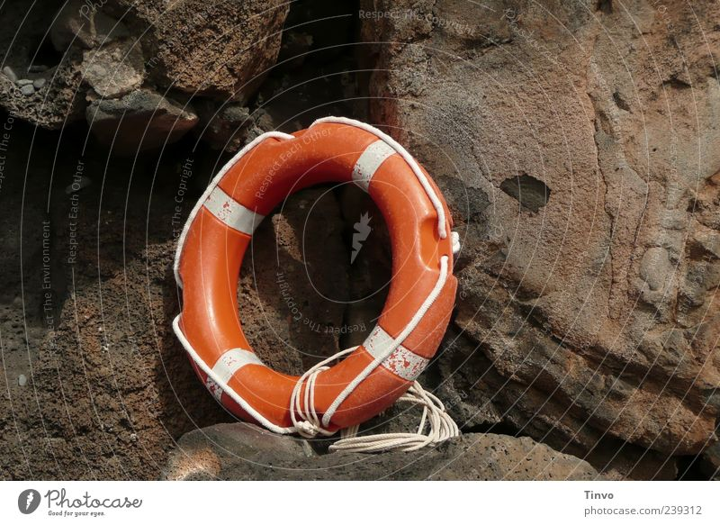 orange lifebelt in front of rocks Life belt Brown White Orange Rescue equipment Rope Rock Survive Circle Round Deserted Wall of rock 1 Colour photo