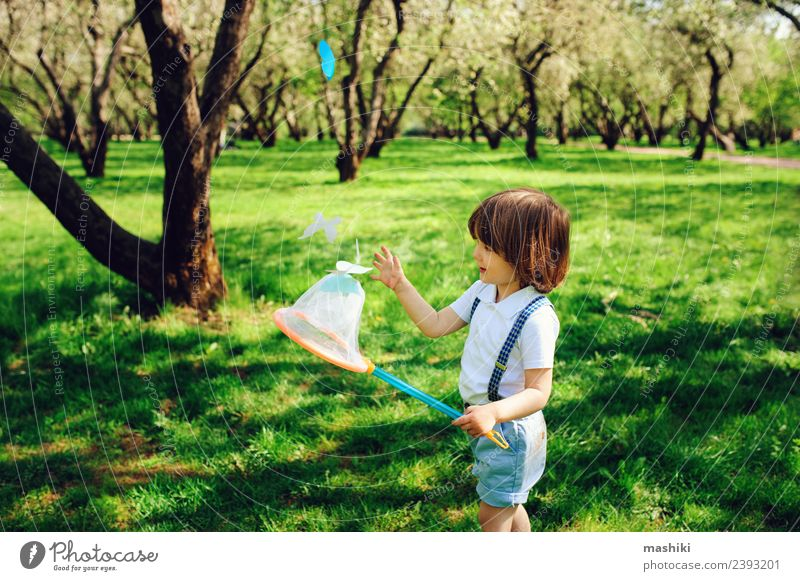 happy child boy catching butterflies Joy Playing Vacation & Travel Camping Summer Garden Child Tool Toddler Infancy Nature Tree Park Fashion Butterfly Smiling