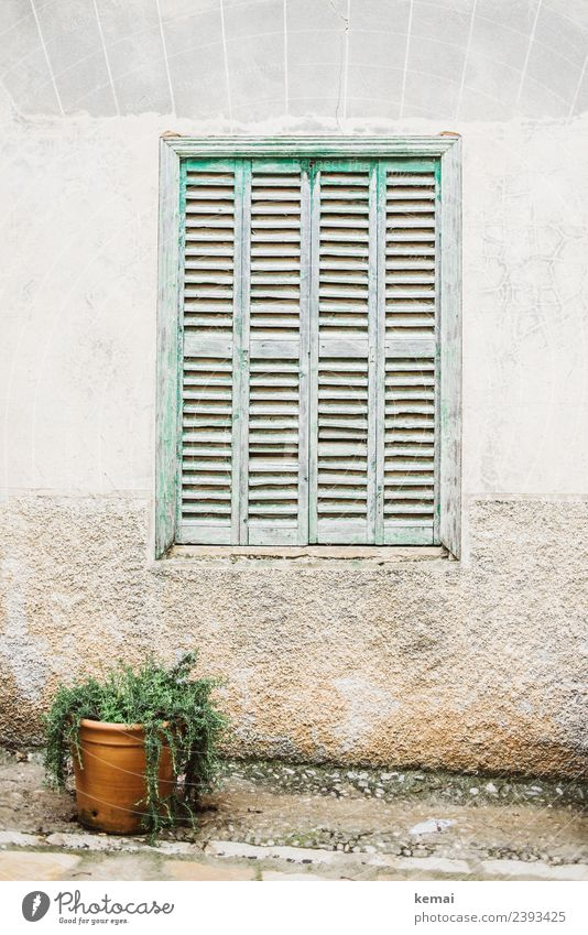 Vacation & Travel Green White Relaxation Calm Window Lifestyle Wall (building) Style Wall (barrier) Facade Living or residing Trip Contentment Bright Esthetic