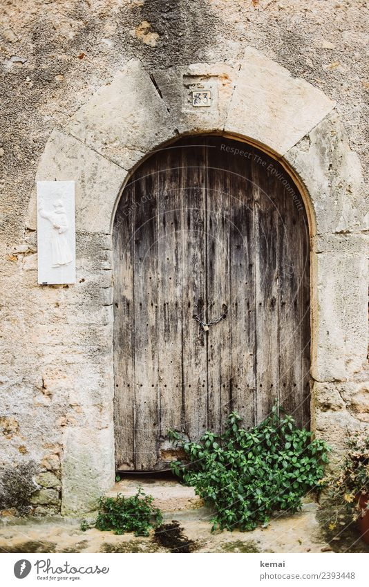 old door Harmonious Calm Leisure and hobbies Vacation & Travel Trip Sightseeing Nature Summer Bushes Italy Small Town Old town Wall (barrier) Wall (building)