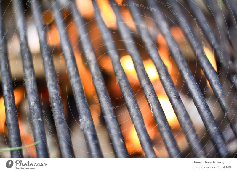 angrillas Barbecue (apparatus) Grill Charcoal (cooking) Embers Hot BBQ season Grating Line Metal Bright Illuminate Fire Empty Colour photo Detail