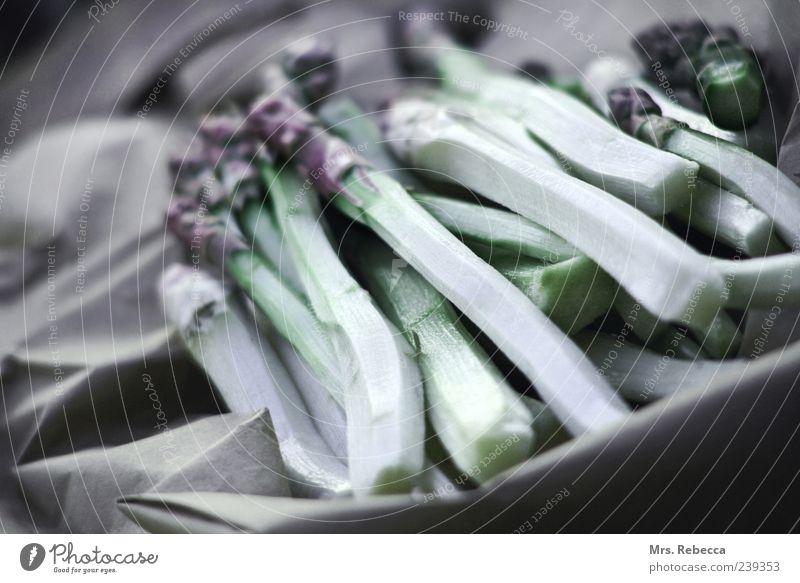 asparagus Food Vegetable Asparagus Organic produce Calm Colour photo Subdued colour Exterior shot Copy Space left Contrast Shallow depth of field