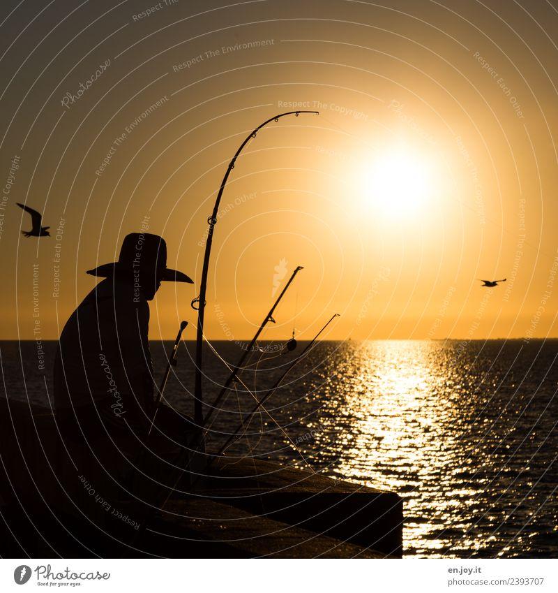 Relax Leisure and hobbies Fishing (Angle) Vacation & Travel Man Adults 1 Human being Sky Horizon Sun Sunrise Sunset Summer Ocean Florida USA Americas
