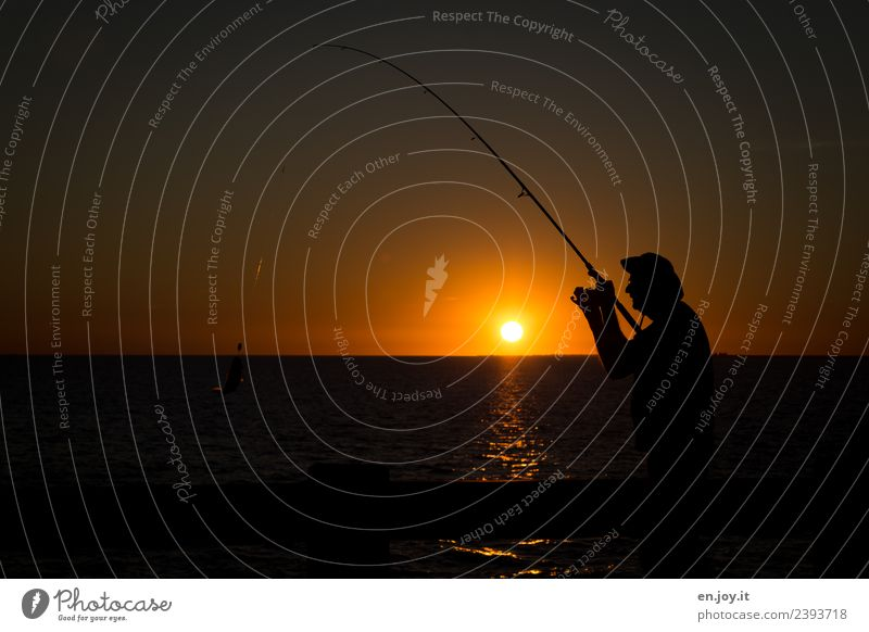 bitten into Leisure and hobbies Fishing (Angle) Vacation & Travel Summer Summer vacation Sun Ocean Man Adults 1 Human being Nature Horizon Sunrise Sunset