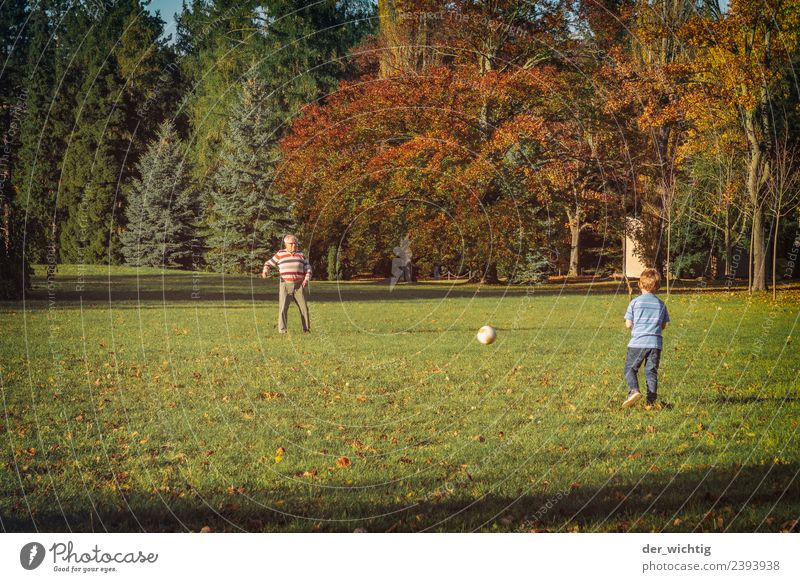 Grandpa & grandchildren play football Sports Soccer Human being Masculine Child Man Adults Grandfather 2 3 - 8 years Infancy 60 years and older Senior citizen