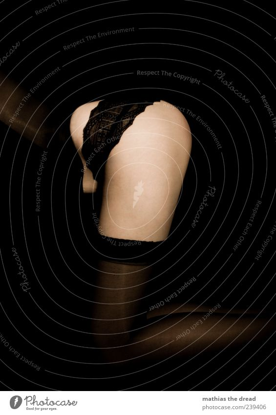 curvature Elegant Style Human being Feminine Young woman Youth (Young adults) Clothing Stockings Underwear Crouch Esthetic Dark Beautiful Eroticism Lace Frills