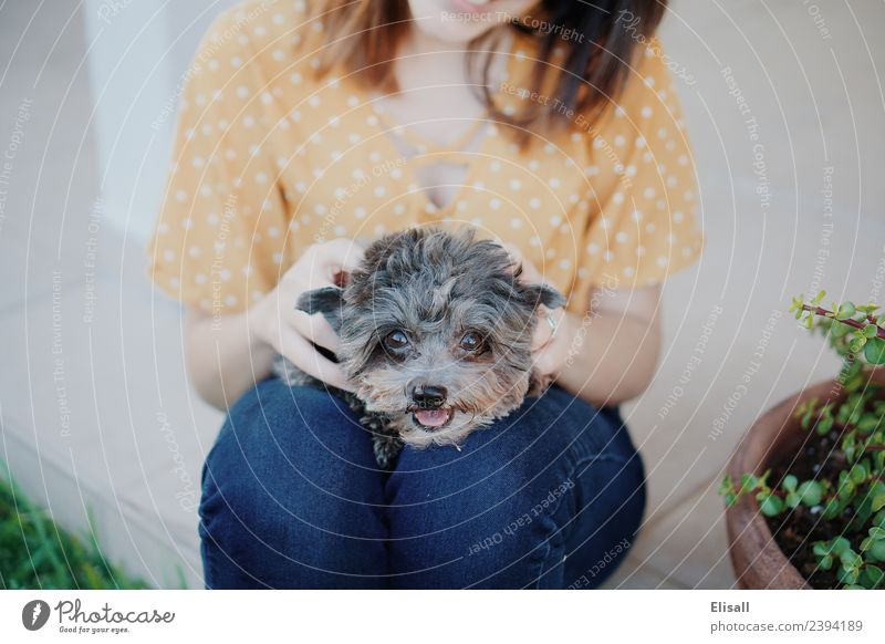 Woman and her pet dog Human being Dog Youth (Young adults) Animal Joy 18 - 30 years Adults Lifestyle Love Emotions Happy Moody Friendship Leisure and hobbies