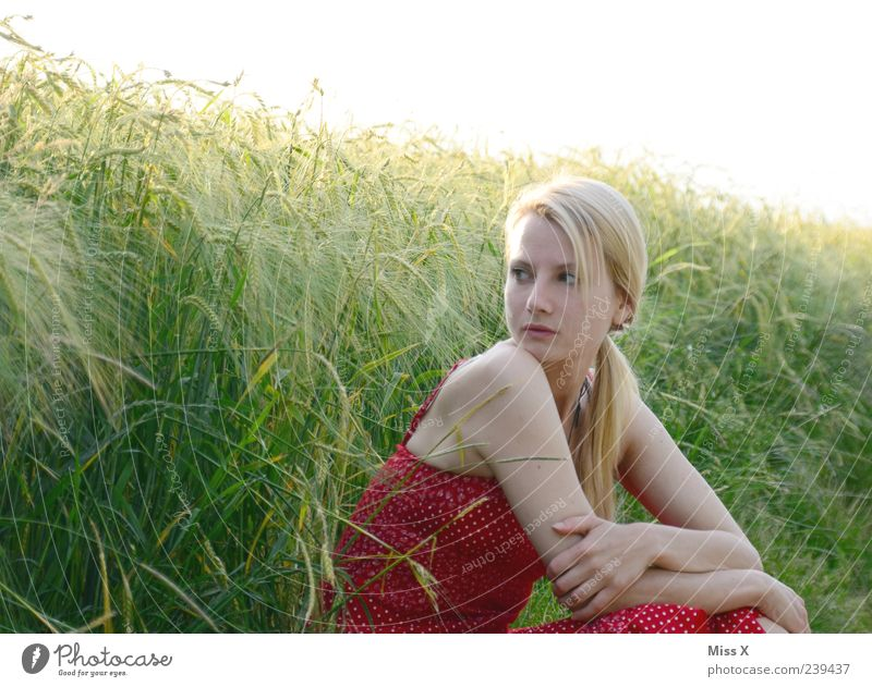 Human being Youth (Young adults) Beautiful Plant Summer Calm Adults Relaxation Feminine Grass Young woman Blonde Field Sit 18 - 30 years Dress