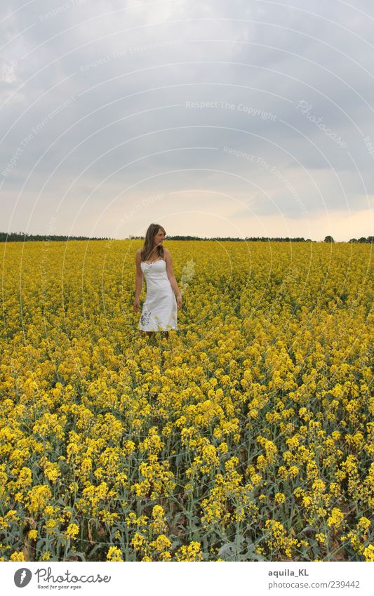 Human being Woman Sky Nature Plant Summer Flower Joy Clouds Calm Adults Yellow Landscape Feminine Air Earth