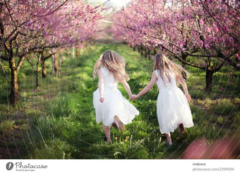 twosome Human being Feminine Child Girl Brothers and sisters Sister Infancy 2 8 - 13 years Environment Nature Landscape Spring Summer Beautiful weather Garden
