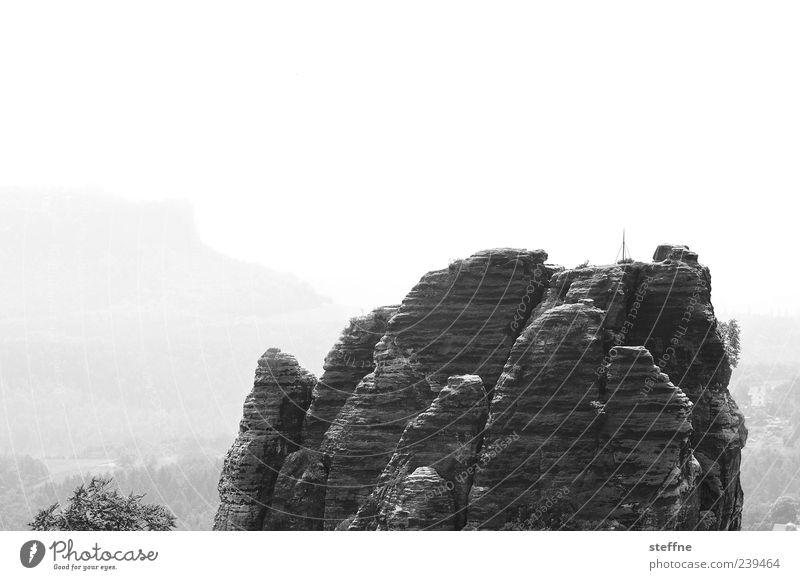 Environment Landscape Mountain Rock Travel photography Saxon Switzerland Stone Elbsandstone mountains Elbsandstein region