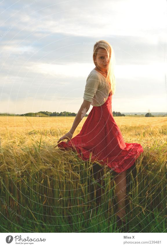 Human being Nature Youth (Young adults) Beautiful Red Summer Calm Adults Feminine Grass Fashion Young woman Blonde Field 18 - 30 years Dress