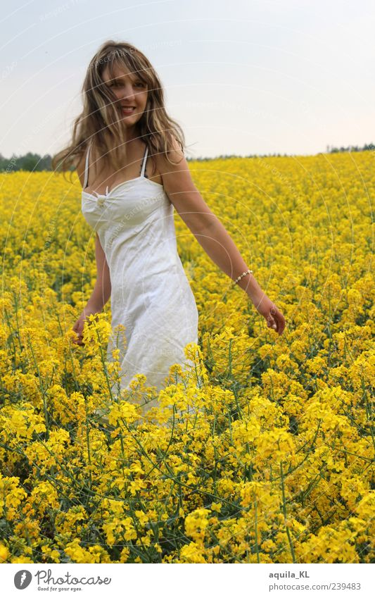 sea of gold Human being Feminine Young woman Youth (Young adults) Woman Adults 1 18 - 30 years Nature Landscape Plant Flower Bushes Canola Canola field Dress