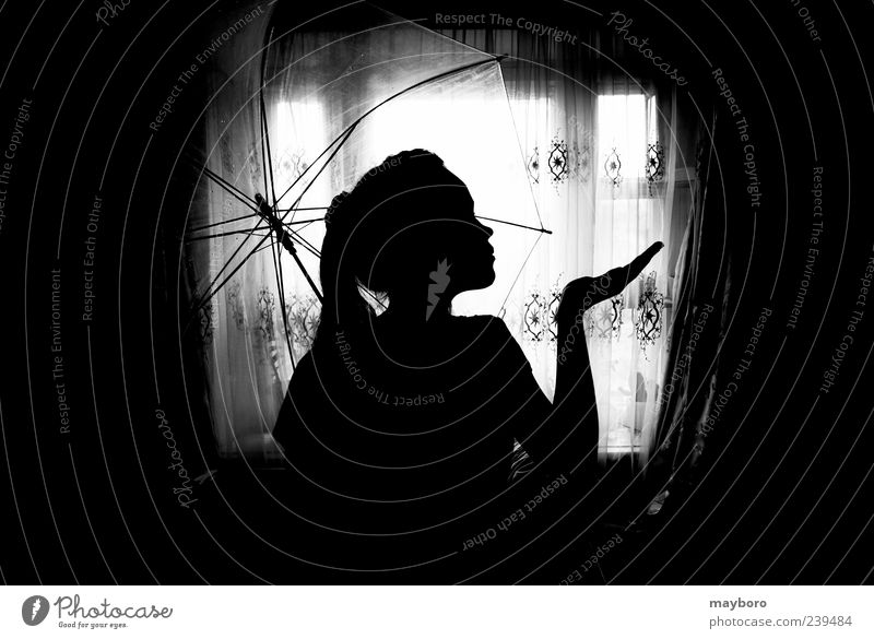 silhouette of a girl Freedom Summer Human being Child Woman Adults Head 1 13 - 18 years Youth (Young adults) Weather Window Tall Expression light umbrella Dusk