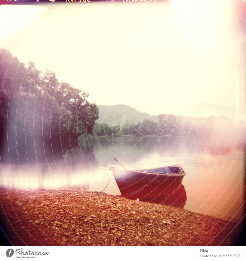 Water Tree Calm Fog Empty Lakeside Fantastic River bank Holga Mystic Lomography Watercraft Rowboat Gorgeous Light (Natural Phenomenon)