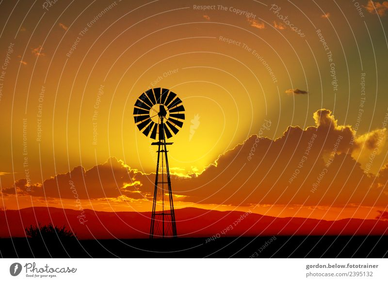 evening mood Landscape Sky Clouds Horizon Sunrise Sunset Summer Cactus Wooden windmill Moody Happy Contentment Joie de vivre (Vitality) Enthusiasm Power