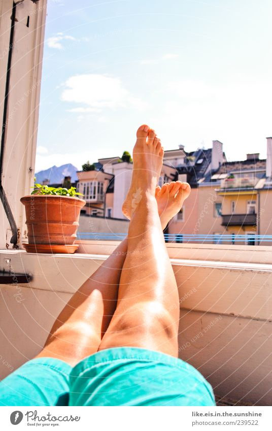 Summer Calm Relaxation Window Legs Feet Contentment Masculine Sleep Pants Balcony Joie de vivre (Vitality) To enjoy Well-being Boredom Summer vacation