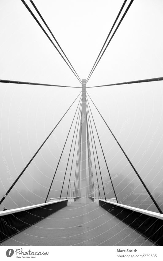 White Black Architecture Gray Fog Illuminate Bridge Bridge railing Central Populated Black & white photo Bridge construction