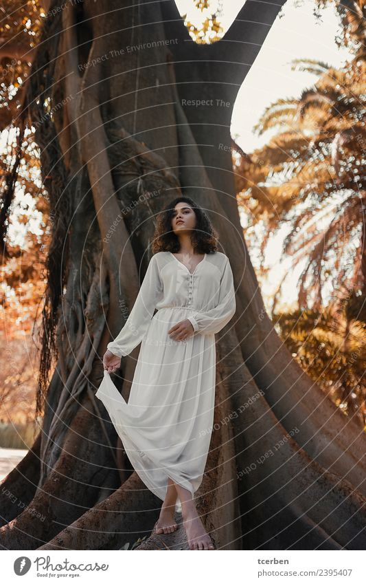 Brazilian woman barefoot wearing a white dress on big tree roots Human being Youth (Young adults) Young woman Beautiful White Sun Tree Eroticism Loneliness