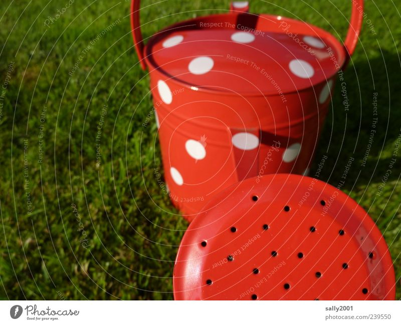 White Red Meadow Metal Exceptional Happiness Esthetic Point Gardening Cast Spotted Gardener Spring fever Watering can
