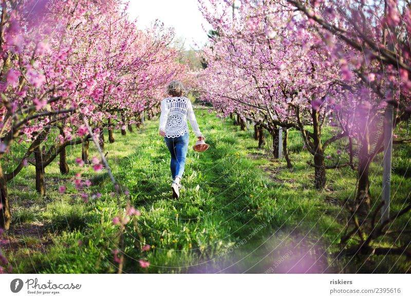 Woman Human being Nature Youth (Young adults) Young woman Plant Landscape Relaxation Calm 18 - 30 years Adults Life Environment Spring Feminine Happy