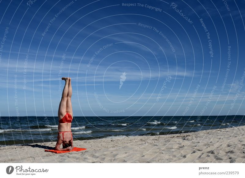 beachhead stand Relaxation Calm Vacation & Travel Summer Summer vacation Beach Ocean Yoga Human being Feminine Body Back Bottom Legs 1 45 - 60 years Adults