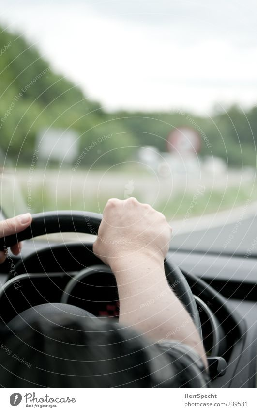 Flag, flag, flag on the motorway Arm Hand 1 Human being Motoring Street Car Driving Steering wheel Windscreen Shoulder Underarm Road sign Colour photo