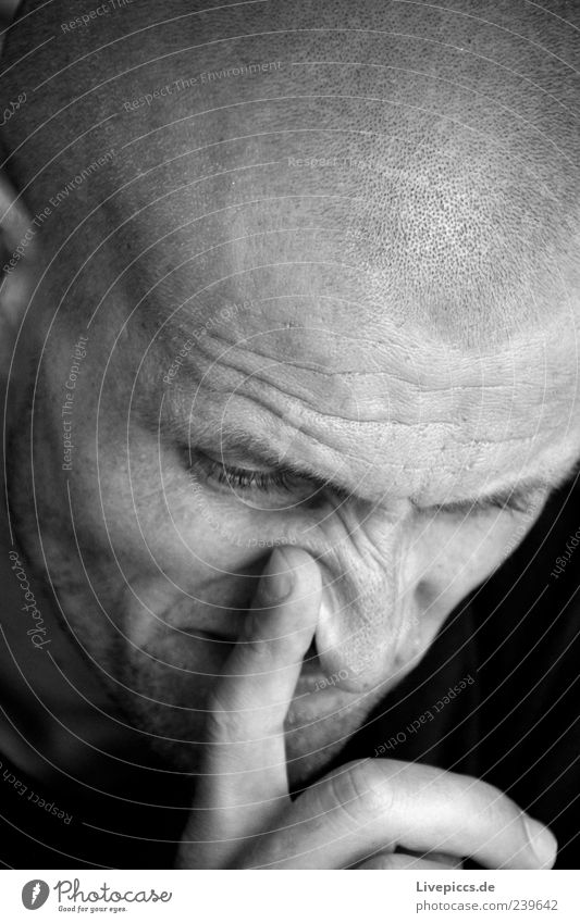 mesh Human being Masculine Man Adults Friendship Head 1 30 - 45 years Bald or shaved head Think Aggression Threat Cold Strong Anger Black White Moody Power
