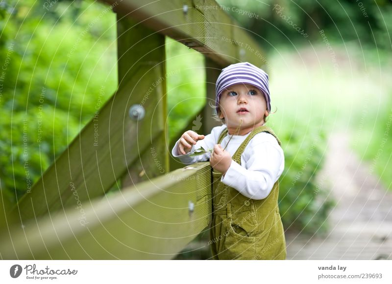 Human being Child Nature Plant Lanes & trails Wood Infancy Cute Bridge Curiosity Cap Toddler Vintage Striped Overalls Exterior shot