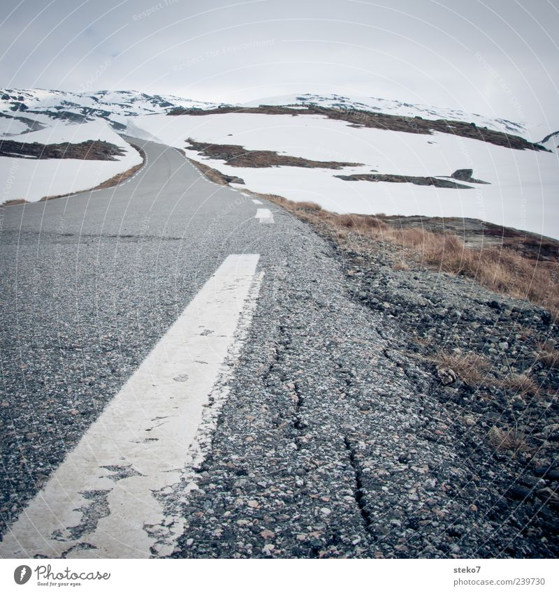 snow road Mountain Snowcapped peak Street Gloomy Gray White Loneliness Far-off places Norway Vacation & Travel Winter Marker line Asphalt Roadside Colour photo