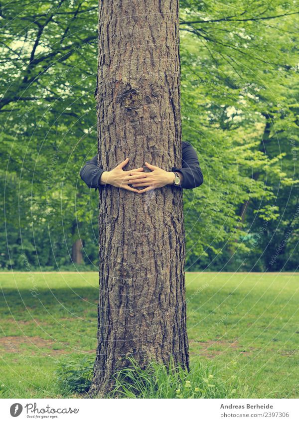 Young man embracing a tall tree Beverage Life Harmonious Calm Summer Human being Masculine Youth (Young adults) Hand Nature Tree Park To hold on Love Embrace