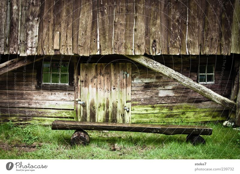 green brown Moss Meadow Hut Facade Window Door Wood Old Poverty Brown Green Norway Bench Rural Farm Colour photo Exterior shot Deserted Copy Space top