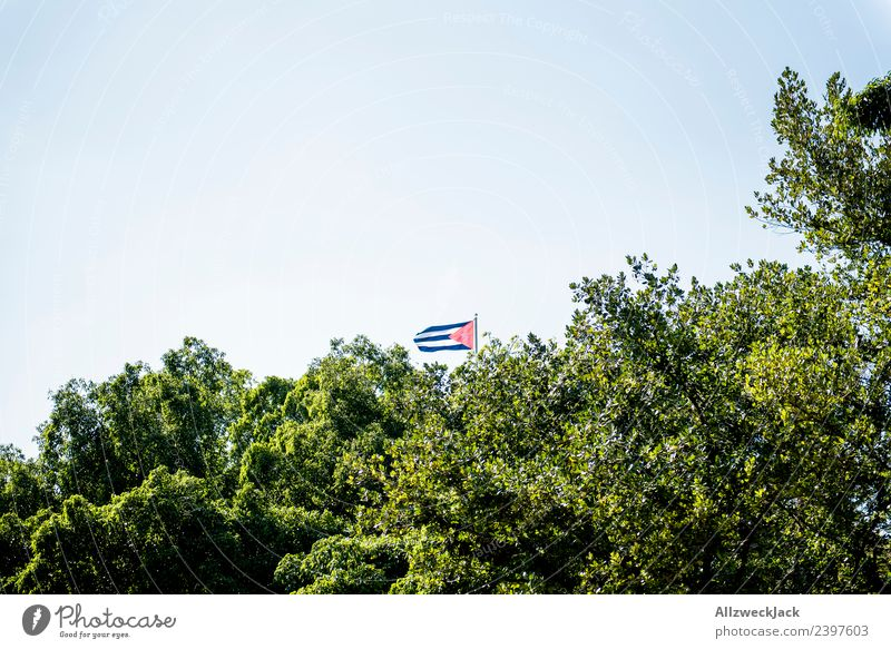 Small Cuba flag behind trees Havana Flag Tree Treetop Green Leaf Wind Blow Pennant Patriotism Vacation & Travel Travel photography Nature Socialism Blue sky
