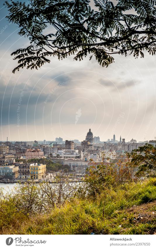 View of the skyline of Havana Cuba Island Socialism Vacation & Travel Travel photography Trip El Malecón Skyline Vantage point United States Capitol Landmark