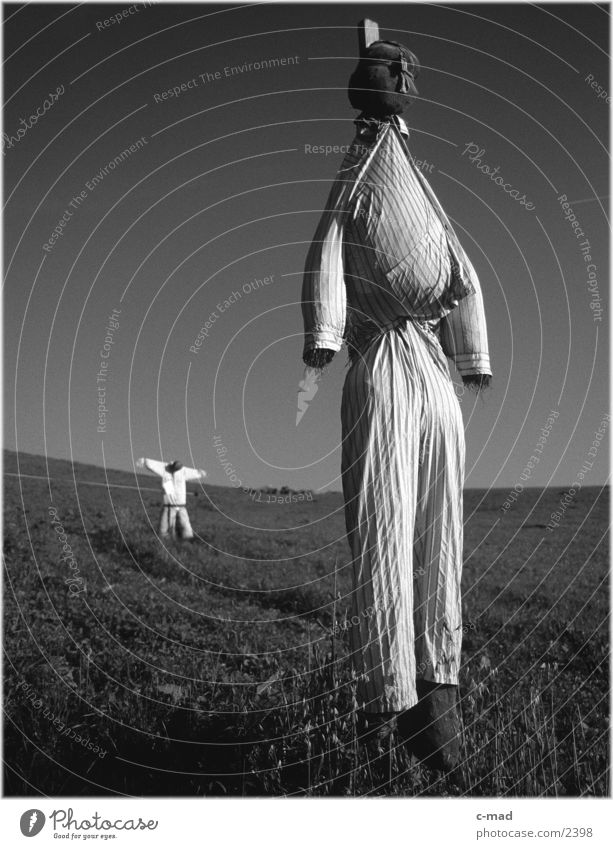 Scarecrows VI Rural Meadow Obscure Landscape Nature Black & white photo